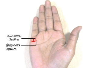 Line Of Children On The Palm Chinese Palmistry Hand Reading