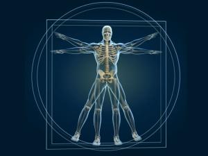 Lesser Known Mysteries Secrets Human Body
