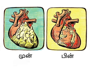 Six Ayurveda Remedies Healthy Heart