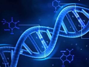 Gene Matters Chronic Pain