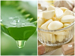 What Happens When You Drink Aloe Vera Juice With Garlic