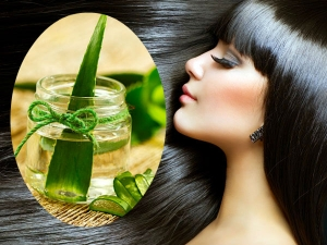 Ayurveduic Health Benefits Aloe Vera