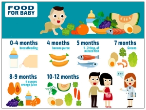 Food Chart For Your Baby
