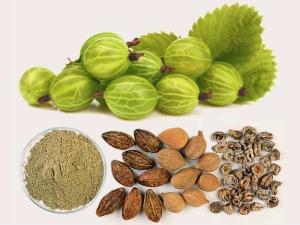 Aurvedic Herbs Cure Many Diseases