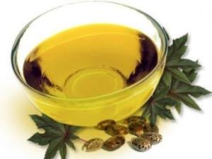 Medicinal Uses Castor Oil Aid