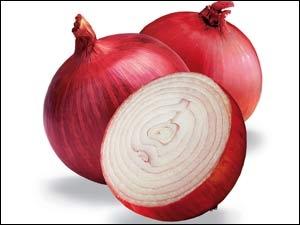 Onion Herbal Medicine Bacteria Aid