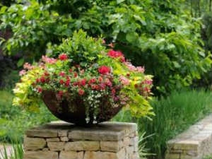 How Refresh Soil A Container Garden Aid