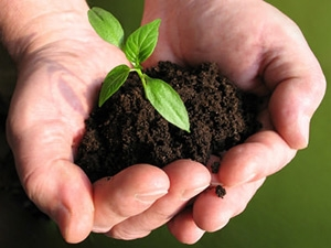 How Prepare Soil Your Garden Aid