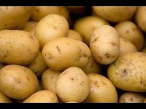 Potato Boli