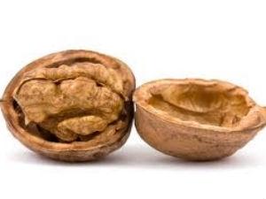 Walnut Dates Mint Chutney