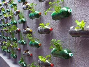 Ways Reuse Plastic Bottles