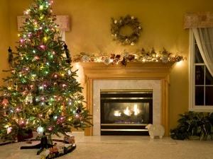 Christmas Tree Pics Borrow Ideas