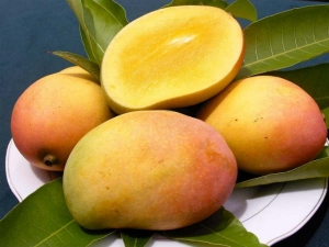 Health Benefits Mango