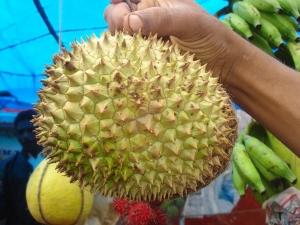 Health Benefits Durian Fruit