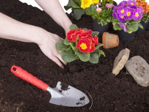 How To Pick Up Garden Friendly Soil