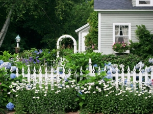 Fence Gardening Ideas For Winter