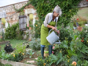 Tips Maintaining Kitchen Garden