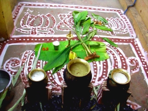 Rituals Associated With Pongal Festival