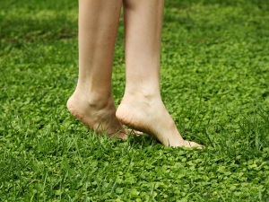 Simple Remedies Cracked Heel