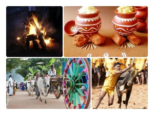 History Pongal