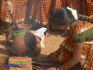 History Pongal Festival