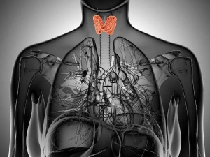 These 5 Foods Could Be Destroying Your Thyroid