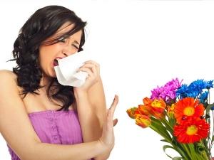 Foods Prevent Dust Allergy