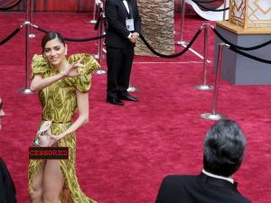 Blanca Blanco Suffers Major Wardrobe Malfunction At Oscars 2017