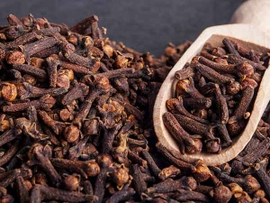 Medicinal Properties Cloves