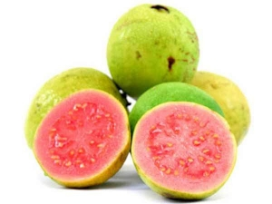 Health Benefits Guava