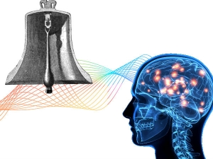 The Science Between Ringing Temple Bell Human Brain Activity