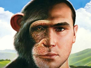 A Twist Our History Early Humans Co Existed Africa With Human Like Species 30000 Years Ago