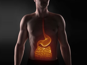 Methods Follow Healty Stomach