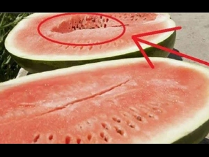 If You Open A Watermelon And You See These Cracks Within Don T Eat It