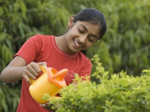 Gardening Can Encourage Kids Eat Healthy
