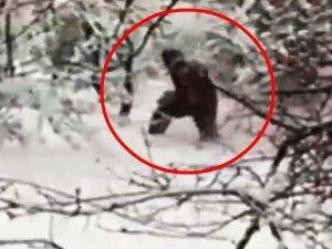 Is Yeti Real Or Fake Things Know About Himalayas Giant Creature Snowman