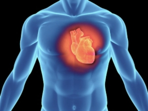 Know Your Risk Level Heart Attack Six Tips Help