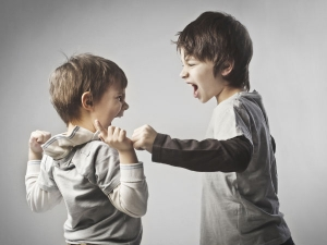 How Stop Siblings Fight