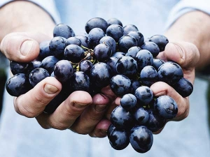 Beauty Benefits Grapes