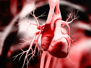 Scientists Develop New Way To Repair Damaged Hearts