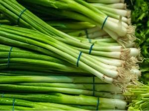 Health Benefits Onion Springs