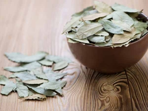 Health Benefits Bay Leaves