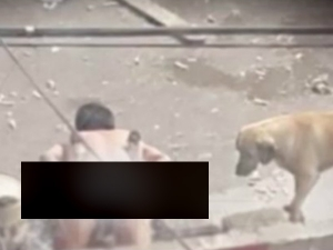 Drunk Man Who Raped Puppy In India