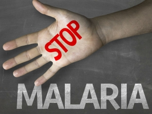 How Escape From Malaria