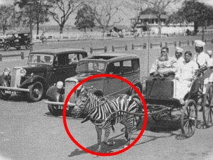 Unseen Pics From Indian History