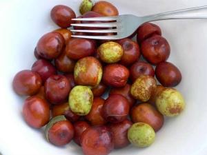 Health Benefits Jujuba Fruit Prevent Diabetes Uterus Disorders