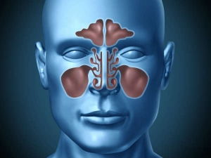 Use These Herbs Sinus Problem