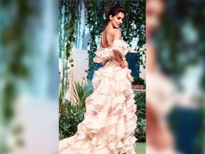 Best Dressed Celebrity Showstoppers At Lakme Fashion Week