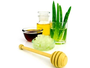 Reasons Why You Must Consume The Mixture Of Aloe Vera And Honey