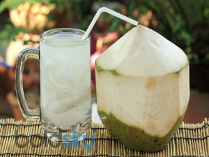 Drinking Coconut Water During Pregnancy 12 Benefits And 3 Myths